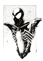 spiderman: black by road2damascus