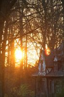 The House in the Woods by robynbirde