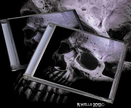 Jewel Case by Ray4359