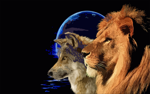 Wolf and Lion by moonlight by Zenom-art