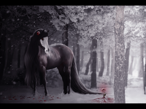 blood rose, by melancholycoyote