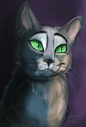 Russian Blue by Mad--Munchkin