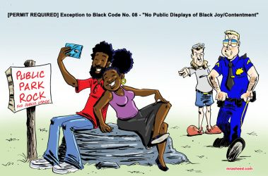 Exception to No Public Displays of Black Joy by mrasheed