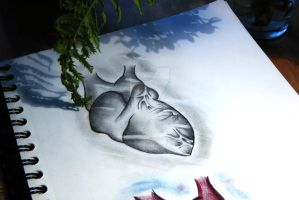 My concept of a Heart by Darko-Donnie