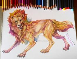 Lion by Ooupoutto