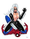 Black Cat VS Spidey Colors by ESO2001