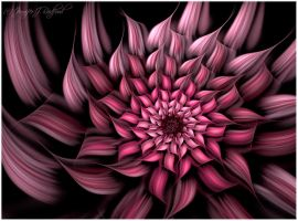 Think Pink: Blossom of Hope by Jenna-Rose