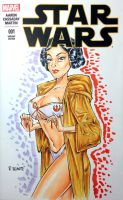 Blank Cover Leia by RichardHuante