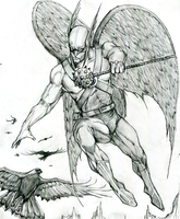 HAWKMAN by Hey-Abbott
