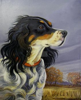 English Setter Testing the Wind by HouseofChabrier