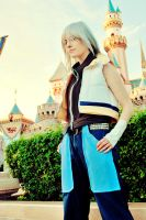 magical kingdom...hearts by soyotome
