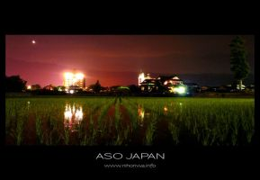 A rice field in the night -1- by Lou-NihonWa