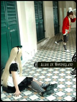 Alice in Wonderland by Cvy