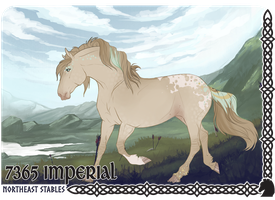 Imperial 7365 by NorthEast-Stables