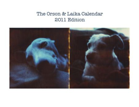 Orson and Laika 2011 Calendar by futurowoman