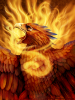 Phoenix portrait by DragonosX