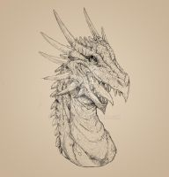 Spined Dragon bust sketch by drakoncast