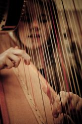 Old Strings, Young Fingers by doches