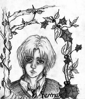 Remus - the ornament by pottering