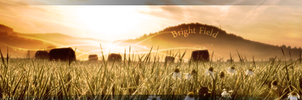 Sign3: Bright Field by Pstrnil