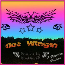 Wing Brushes by BlackHawk00021