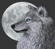Full Moon by InkstainedSword