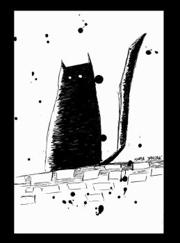 The Black Cat by Acacello