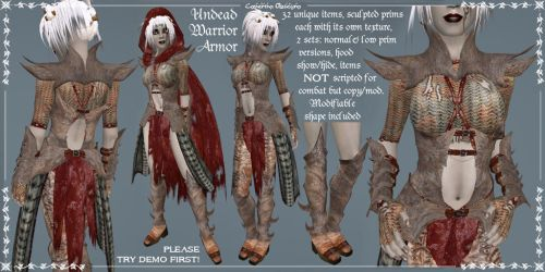 Undead Female Warrior Armor 2 by Elvina-Ewing