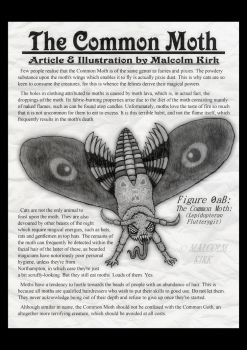 The Common Moth by MalcolmKirk