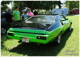 A 1973 Road Runner by TheMan268