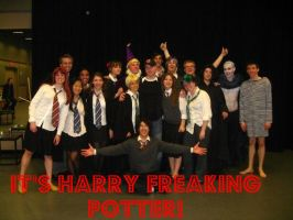 HARRY FREAKING POTTER by prongsandpadfoot