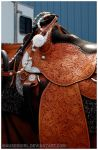 Show Tack by MauserGirl