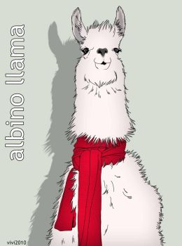 albino llama by litttle-princess