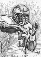 Donovan McNabb PSC by tdastick