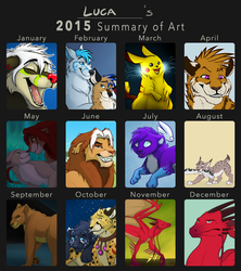 2015 Summary of Stuff by CaraLuca