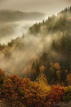The very first automn rain by Annabelle-Chabert