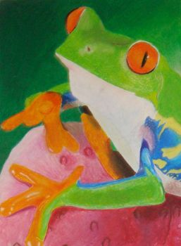 Tree Frog by erinmw