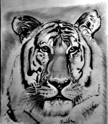 NATIONAL ANIMAL-SAVE TIGER by Avishjoseph