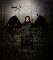 Crows by iblushay