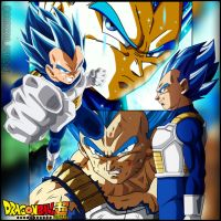Vegeta New Form - Dragon Ball Super by AlAnas2992