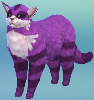 Big (the literal) Cat by RoseOfTheNight4444