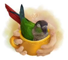 A Cup of Conure - SHIRT AVAILABLE by Brushfeather
