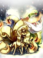 Pokemon : SoulSilver team