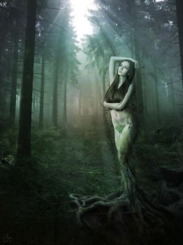 Tree Woman by no-kid-guy