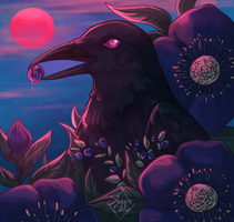 Crow by SteppeCrow