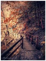 the old ways by Bodhisattvacary