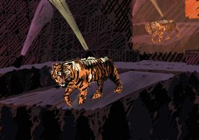 Caged Tigers by sergiokomic
