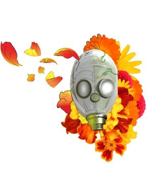 Flower Mask by SlowK