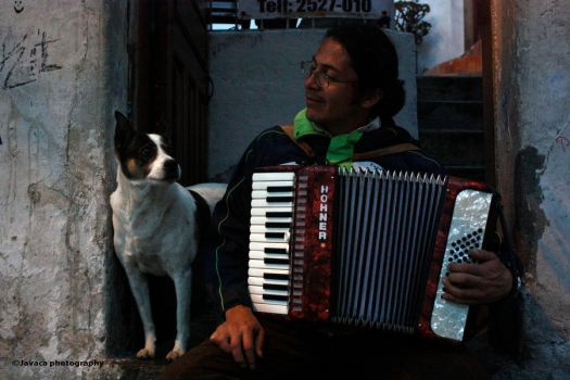 The accordion guy and the dog by ateneita