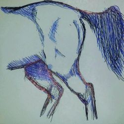 arrire train d'un cheval au bic par Punkee  by punkeedraw